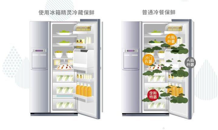 冰箱空气净化器|冰箱里的小秘密-萌草酱